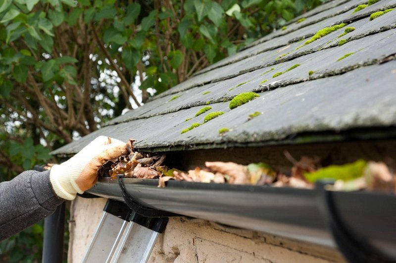 How Our Specialist Gutter Cleaning Business Makes Your Gutters Gleam